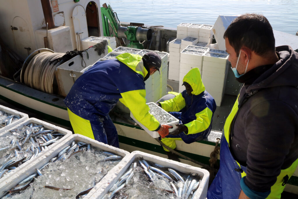 Pescadors de Tarragona
