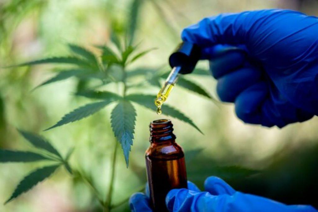 Cop d'efecte d'Andorra pel cultiu de marihuana