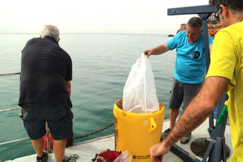Cop d'efecte de l'Ampolla per reduir els residus plàstics al mar